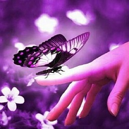 digital art photo of butterfly perched on fingertips